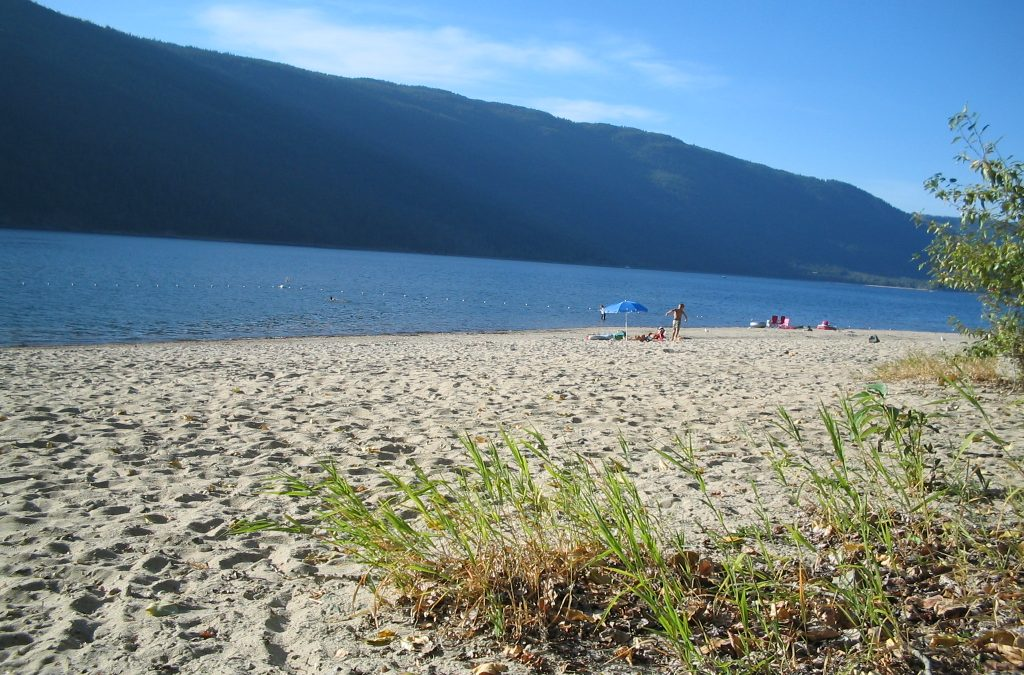 12 Beautiful Beaches Near Enderby, BC